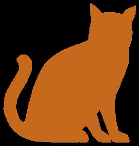 Animal Hospital FAQs
